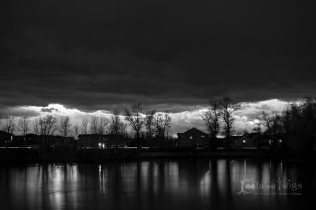 Night Sky, Bozeman, Montana, Black and White