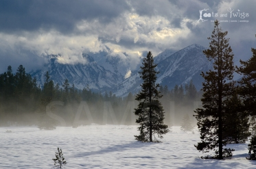 D7K_6996_LR1200_96dpi_Fort-Collins-Colorado-Photographer_LR1200_96dpi_Fort-Collins-Colorado-Photographer