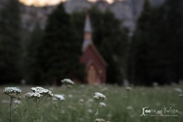 750_4735_LR960H2O_Fort-Collins-Colorado-Photographer