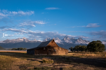 750_5278_LR1200_96dpi_Fort-Collins-Colorado-Photographer